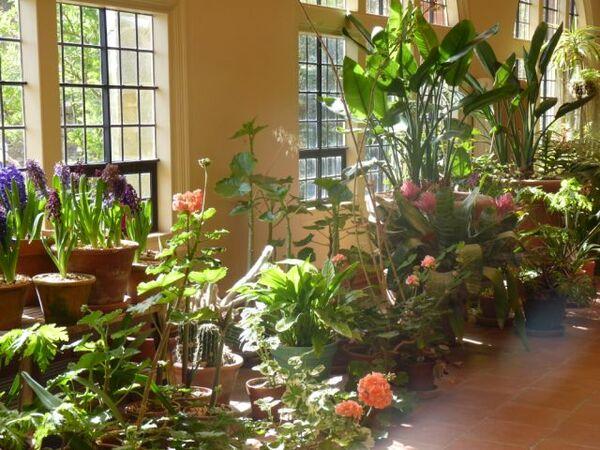 Conservatory, Standen