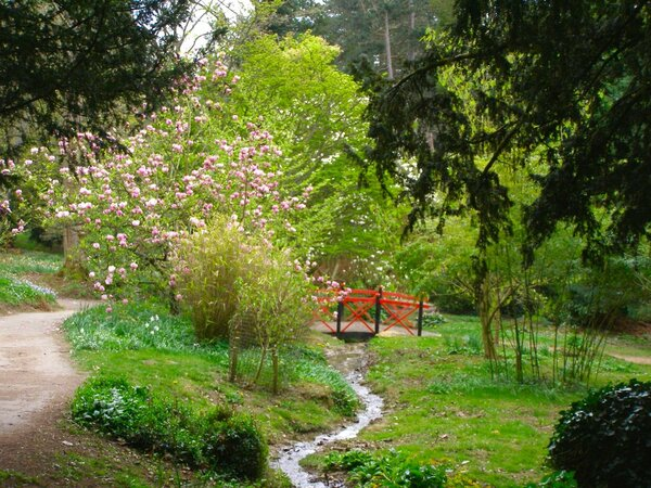 Batsford Arboretum, Spring