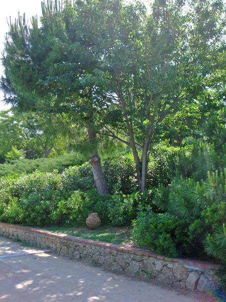 Jardins de Petra Kelly