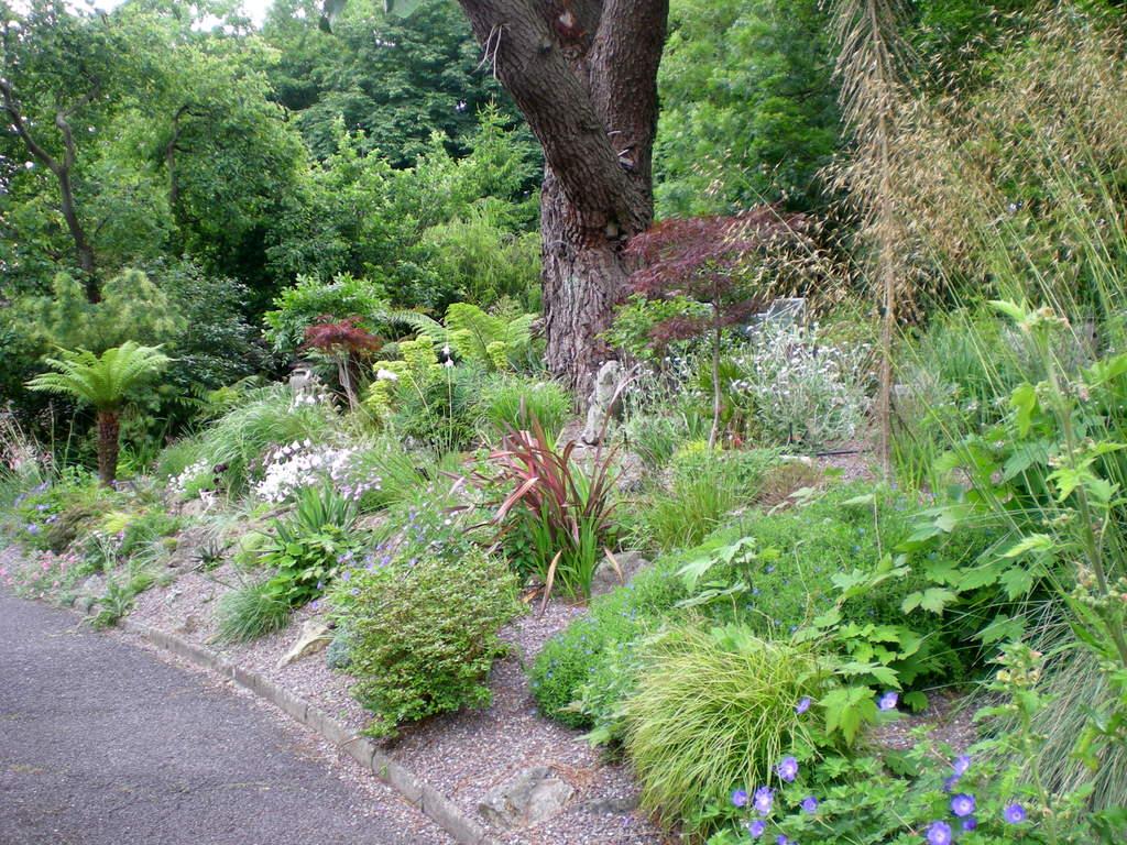 Hillside gardens for Garden design hillside