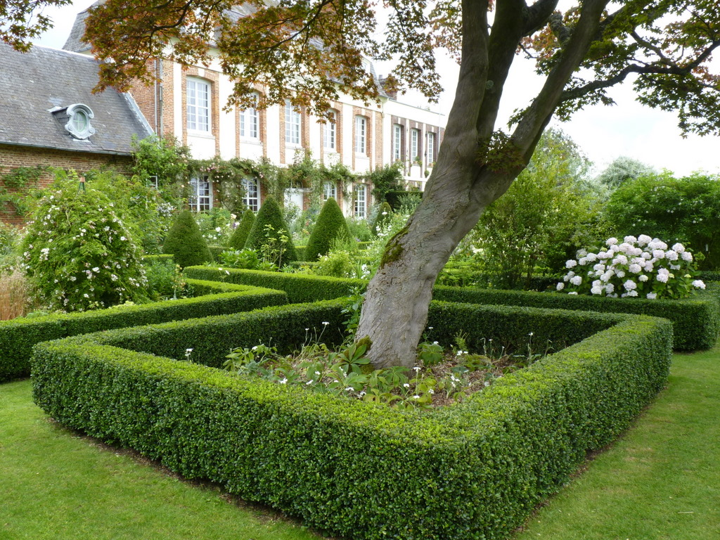 Jardins d 39 angelique for Le jardin de la france