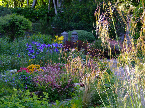Pinsla Garden & Nursery, Cornwall