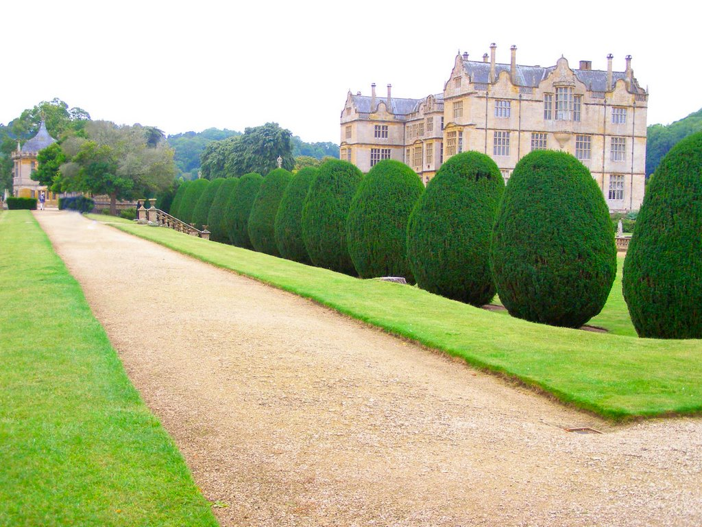 Montacute house garden for Outdoor landscaping