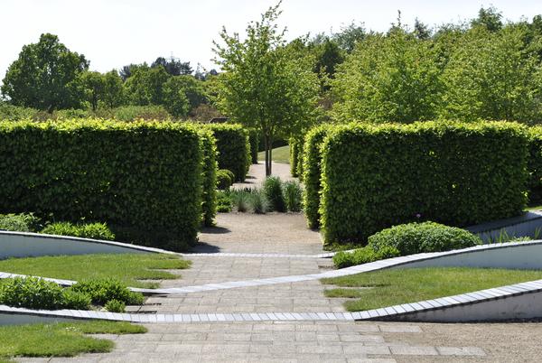 Marks Hall Gardens, Spring