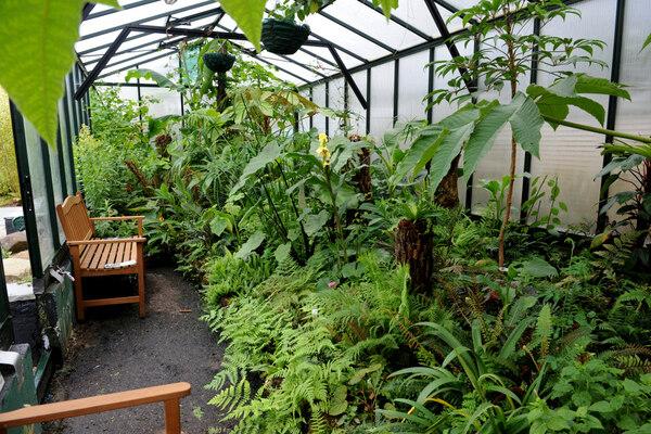 Greenhouse, Dhu Varren Garden