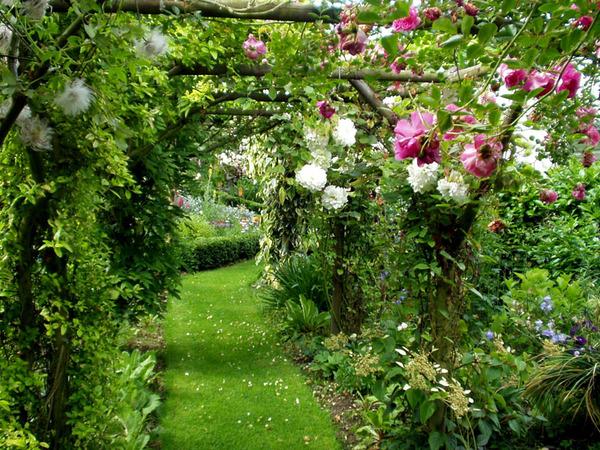 Arbor, Parkhead Gardens