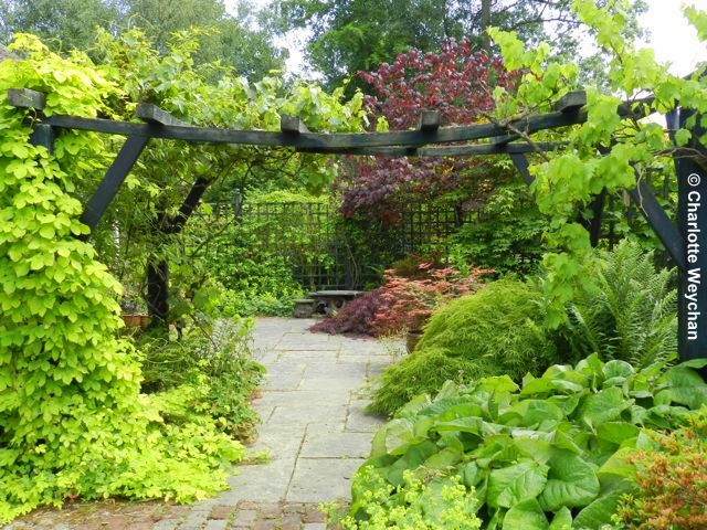 Attractive Green Island Gardens