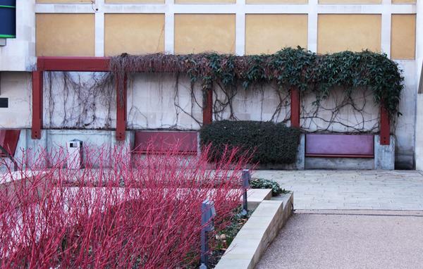 Tate Britain Garden