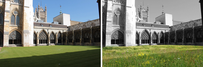 Westminster Medieval Cloister Garden in London