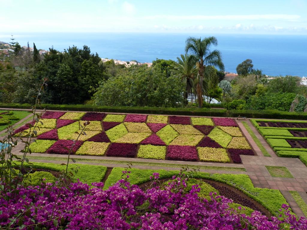 Jardim botanico da madeira for Hotel jardin botanico
