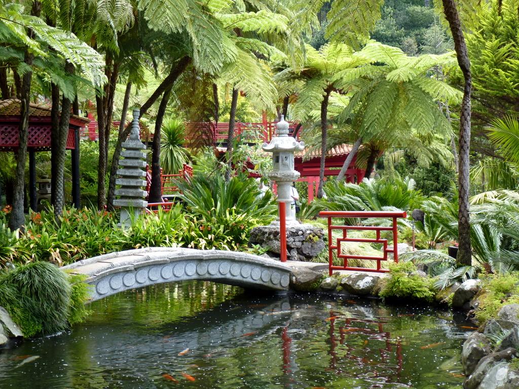 Jardim Tropical Da Quinta Do Monte Palace