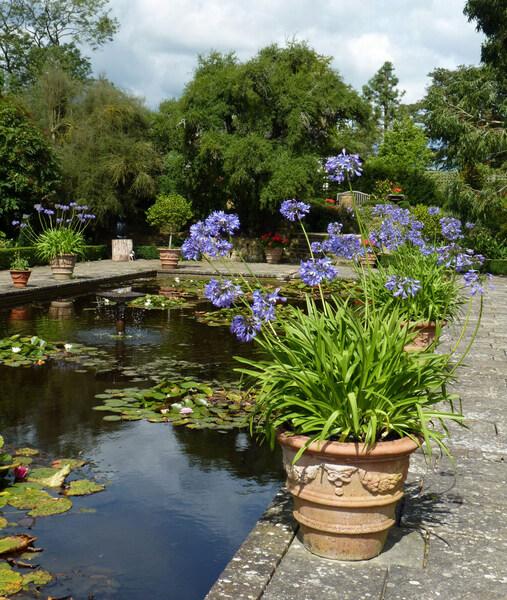 Borde Hill Garden, 2012