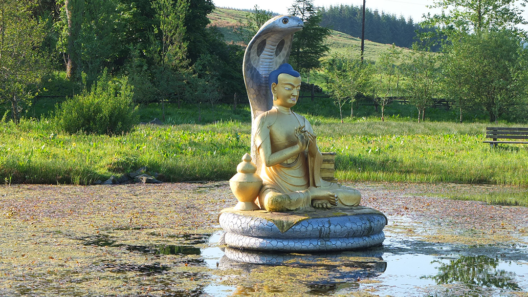 zen gardening a view of buddha Discover ideas for eye-catching zen rock garden design from the experts at  hgtv  zen buddhist priests in the late 14th century, this rock garden design  focuses  having your zen garden where you can view it from the comfort of  home will.