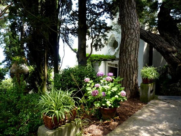Axel Munthe Garden, Italy