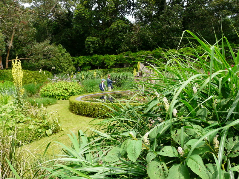 Knoll Gardens and Nursery
