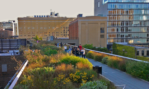 High Line Landscape Architecture NYC