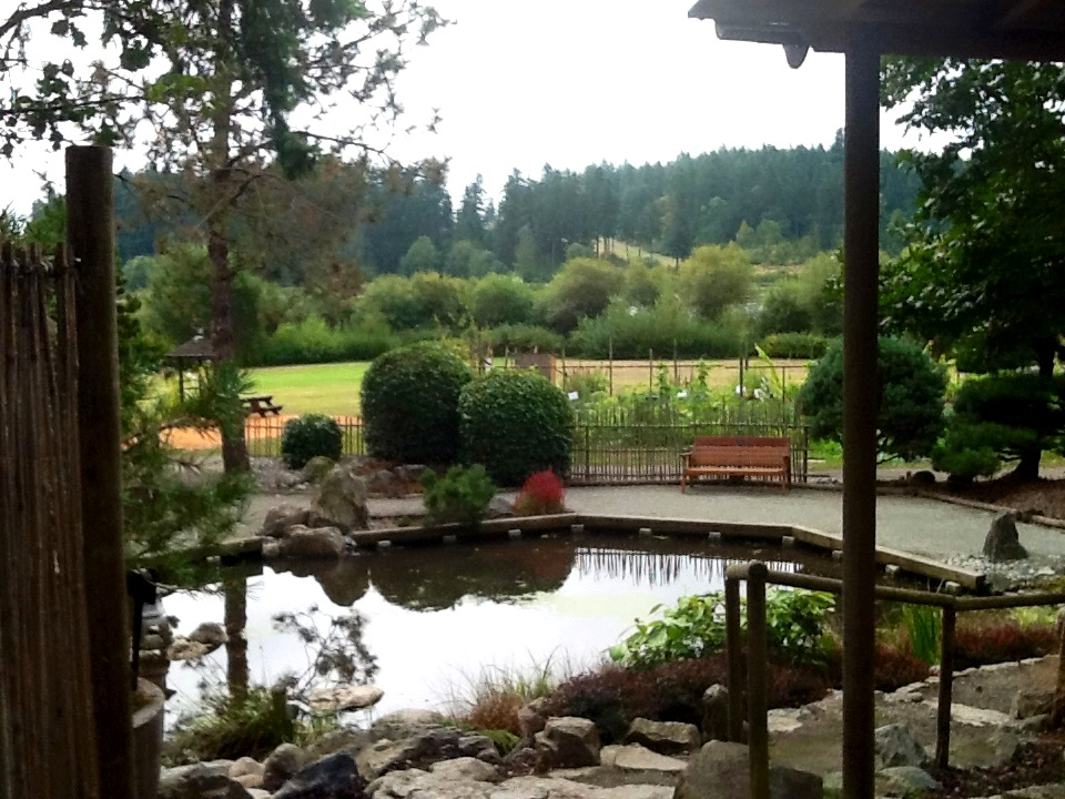 Pond, HCP