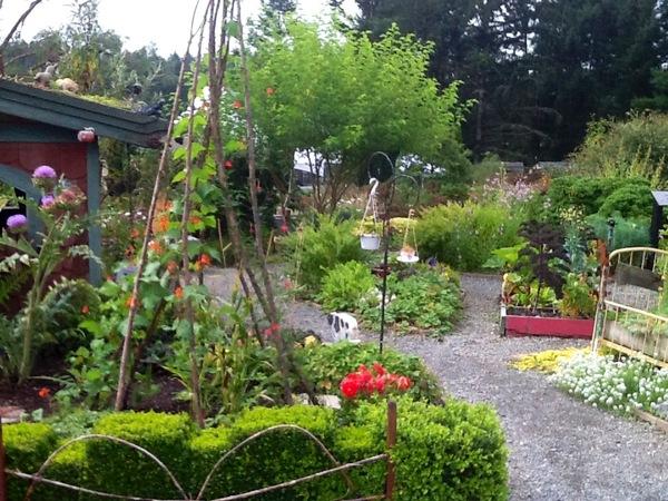 Children's Garden, HCP