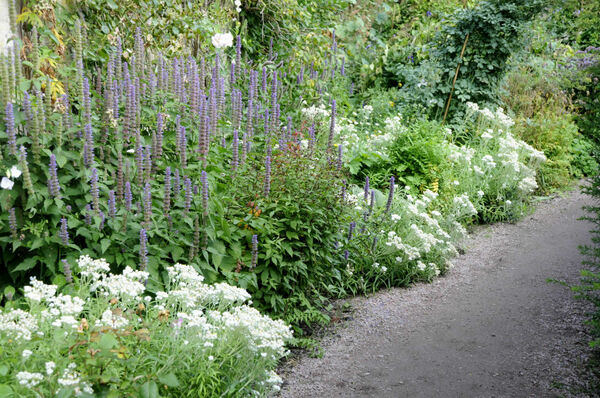 Blue and White Border, Cawdor Castle