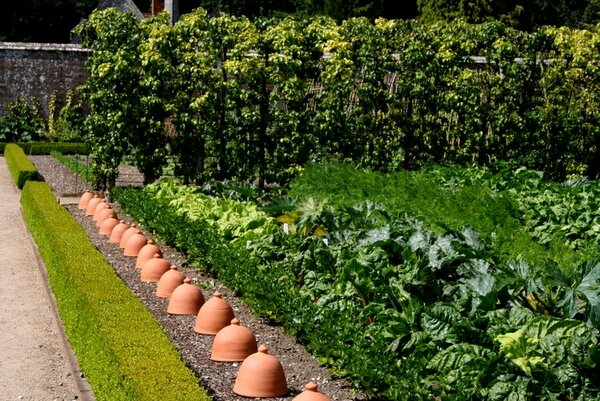 Vegetable Garden, West Dean