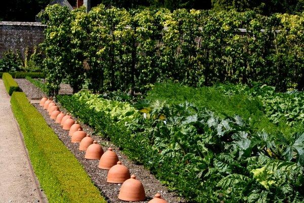 Vegetable Garden, West Dean
