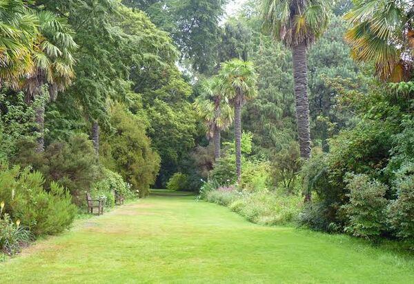 Mount Usher Garden, 2015