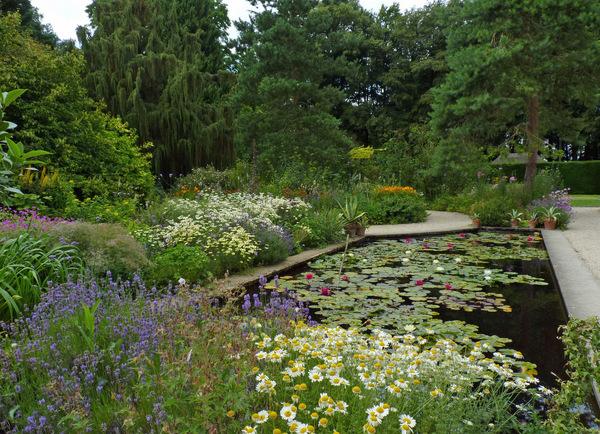 Lily pond, Hidcote