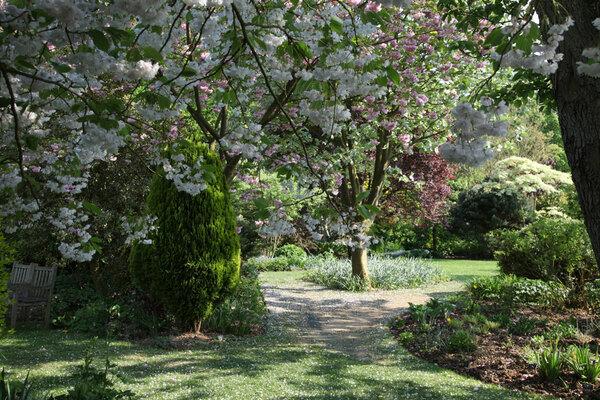 Blossom, Barnsdale Gardens