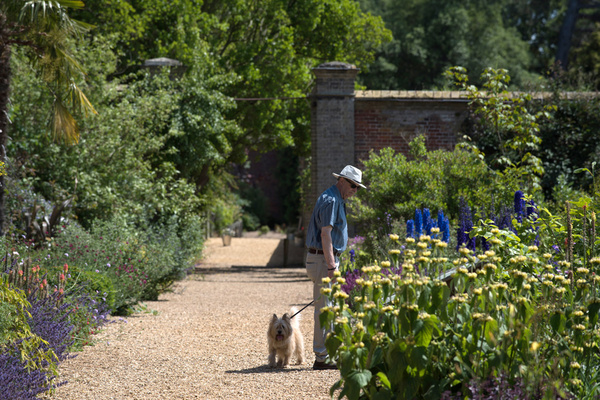 Man and dog, Holkham Hall Garden