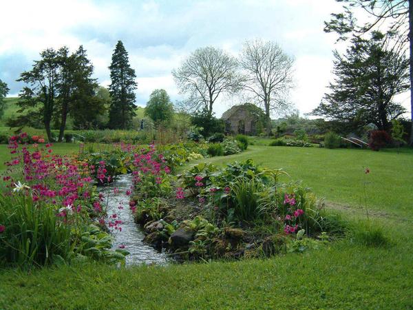 Stream, Loughcrew Gardens