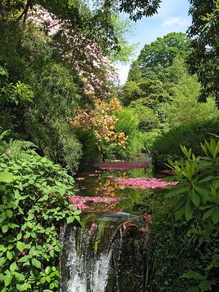 Waterfall, Lukesland Gardens