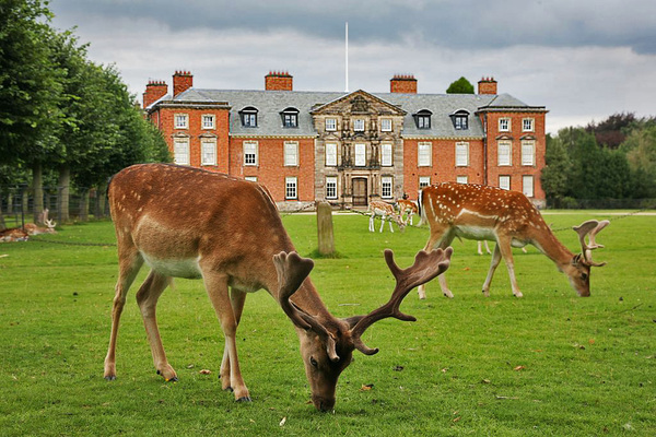 Dunham Massey Hall Garden