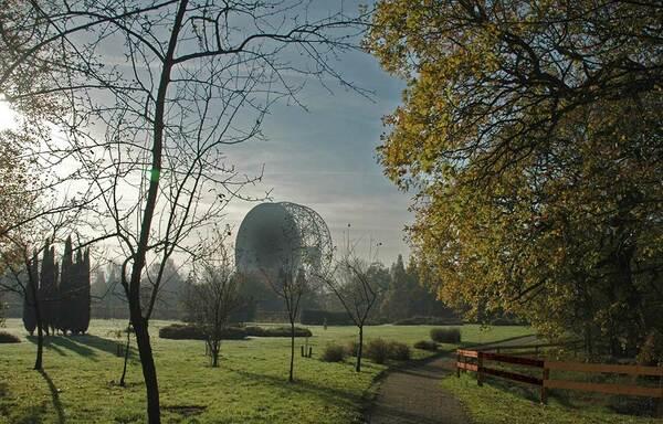 Jodrell Bank Arboretum