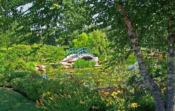 Cotehele Garden