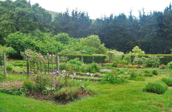 Green Gulch Zen Garden