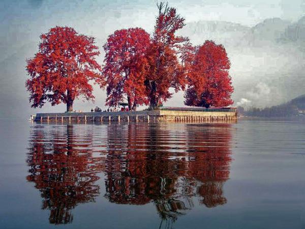 Chahar Chenar Island Kashmir