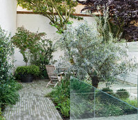 Jonathan Mark Garden Design