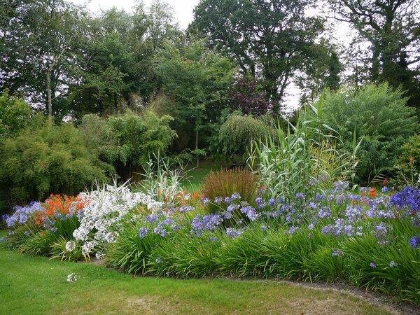 Llwyngarreg Garden in Summer