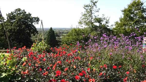 Pembroke Lodge Garden