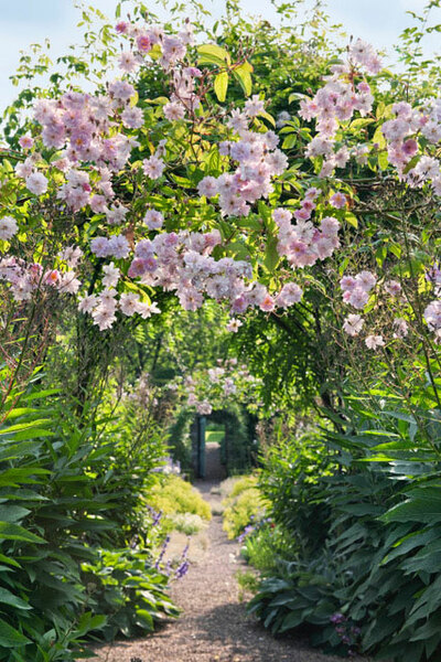 Arch, Carolside Garden