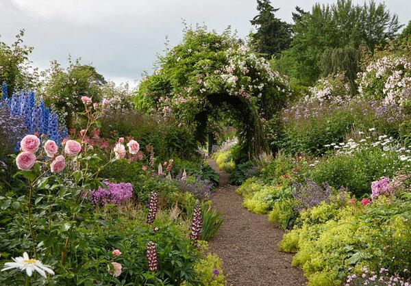 Carolside Garden, Scotland