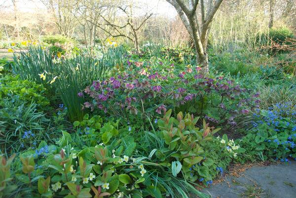 Bates Green Garden, Spring