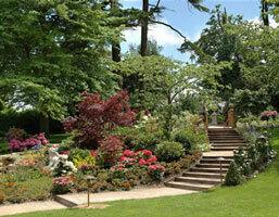 Summer Lodge Hotel Garden