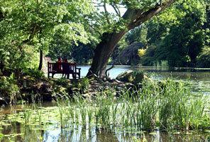 Lake at Swinton Park