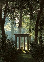 Pandora, Camelia Walk, Renishaw Hall Garden