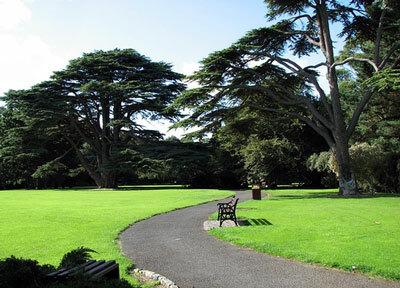 Talbot Botanic Garden by crypto