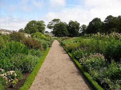 Herbaceous Border at Dirleton Castle