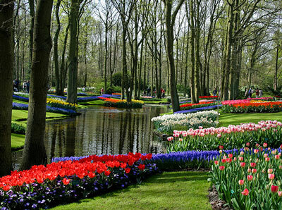 Spring at Keukenhof, Holland