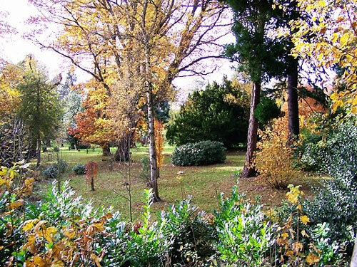 Monteviot House Gardens, Borders