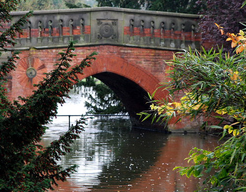 Bridge in Cannon Hill Park